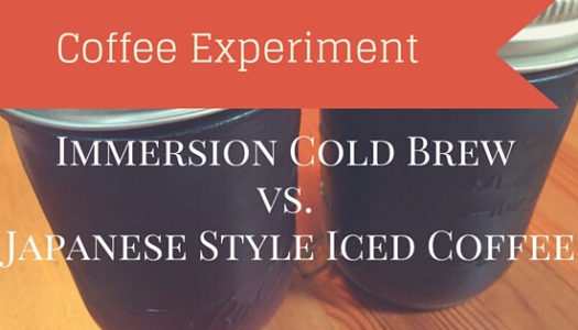Coffee Experiment: Immersion Cold Brew vs. Japanese Iced Coffee